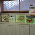 watercolour paintings of fruit